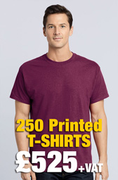 250 x Gildan Heavy Cotton™ T-Shirts Deal